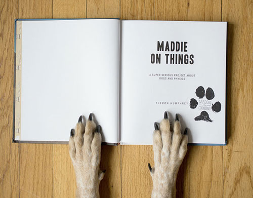 Maddie-on-things-book