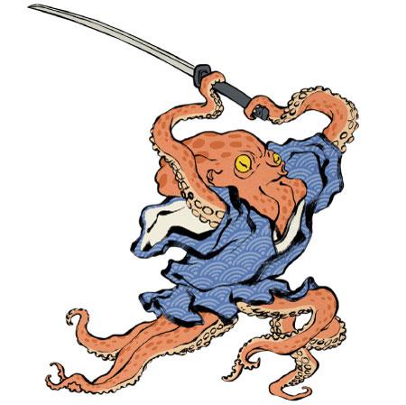 OctopusOPT