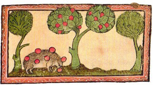 Latin Bestiary Cambridge from 1320