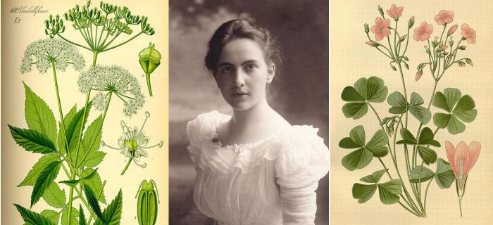 Hannah's Gardentrio