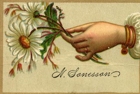 N. Sanesson